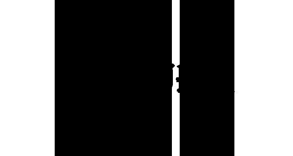 Oxyura